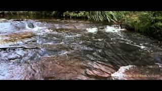 видео Парк Голубые горы, Австралия (8 фото, карта)