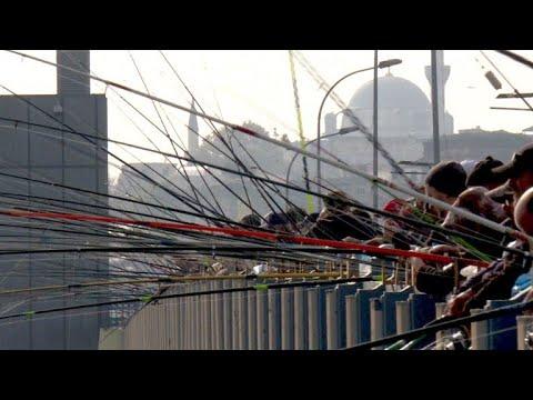 Istanbuls Angler überfischen den Bosporus