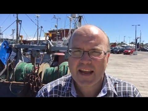 Besøg sjællands største fiskerihavn i Gilleleje