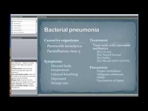Neonatal Care Part IV