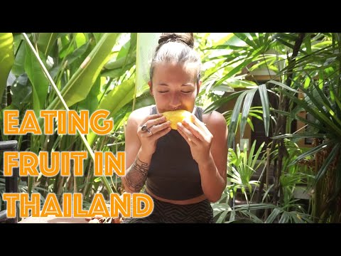 Travel Vlog   Tasty Fruits of Thailand