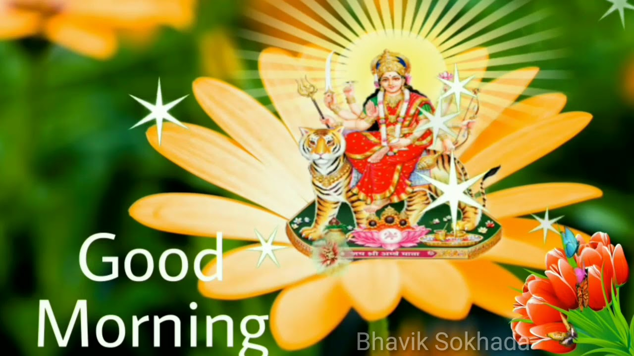 Today Special Good Morning Whatsapp Status Video Youtube
