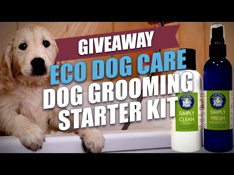 Giveaway: Eco Dog Care Dog Grooming Starter Kit