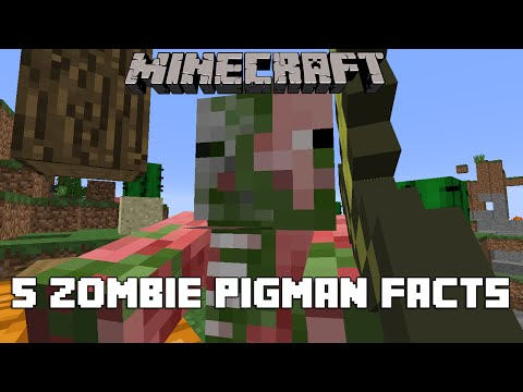 Minecraft - 5 Zombie Pigman Facts And Tricks You Didn't Know