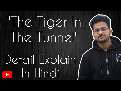 tiger in the tunnel
