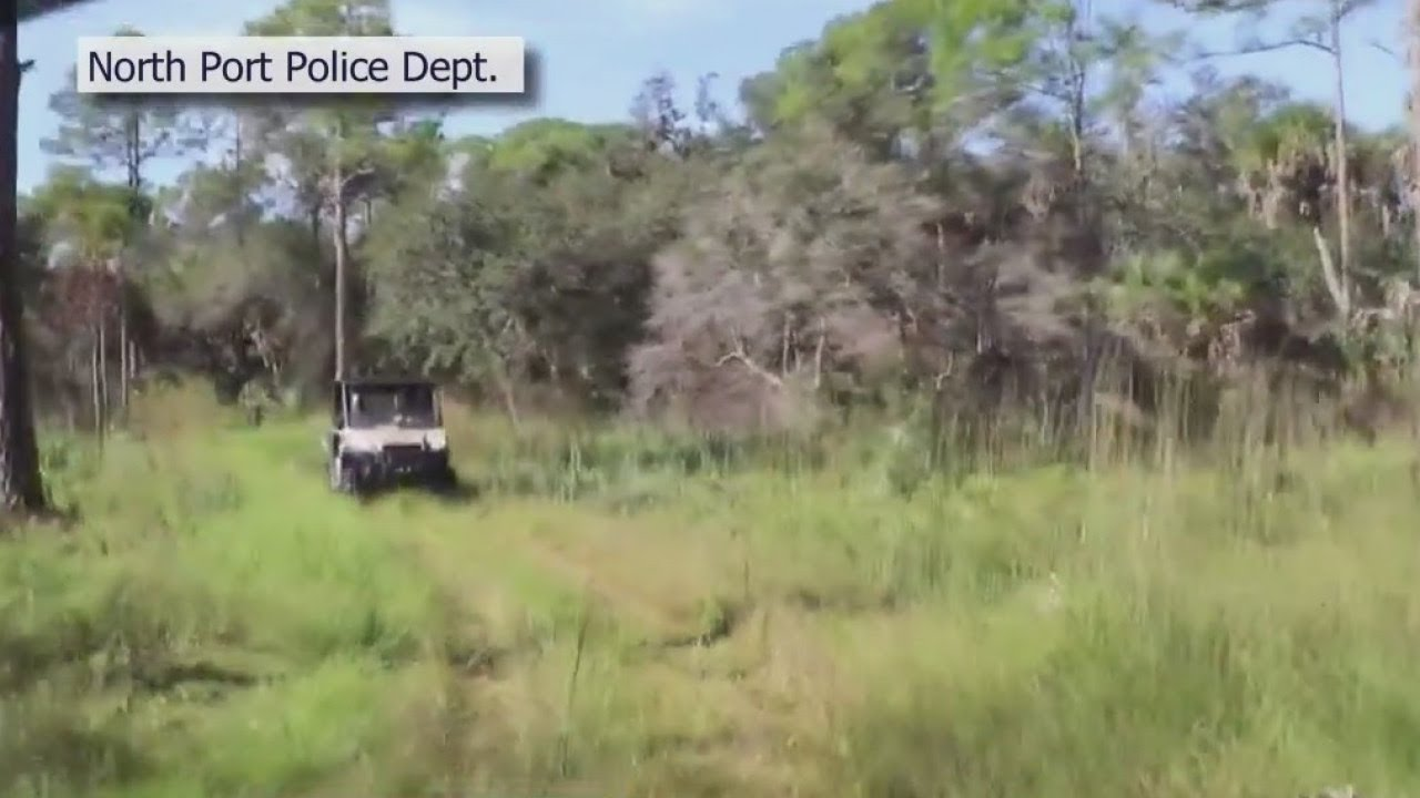 Download Search for Brian Laundrie enters fourth day in swampy Florida preserve