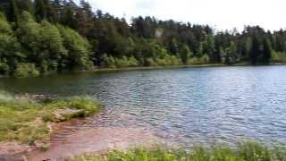 Рыбалка с сыном на р. Чепца \