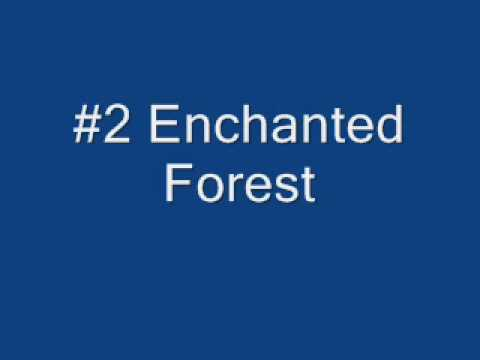#2 Enchanted Forest