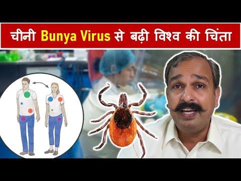 Chinese Bunya Virus से बढ़ी विश्व की चिंता