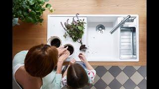 Little Herb Fairies   Kids In The Kitchen