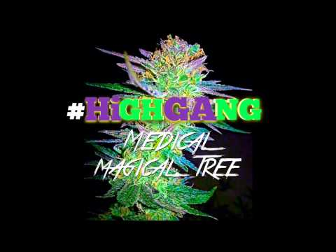 Lil E - Medical Magical Tree