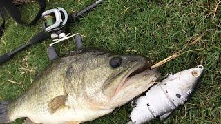 Bass fishing (Dirty Shad) GoPro Hero3+ 720p HD