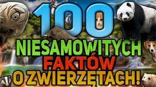 100 Zaskakujących Faktów o Zwierzętach !