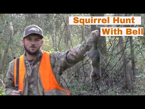 Squirrel Hunt with my squirrel dog Bell