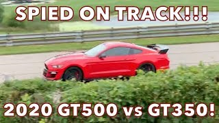 SPIED!!! 2020 Shelby GT500 vs GT350 On Track at Grattan Raceway - Does it set a Record Lap Time?