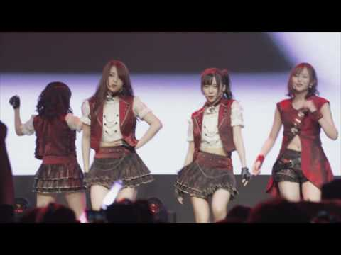 ATF × Ladybeard - 幽灵手记 - Live in Shanghai 2016