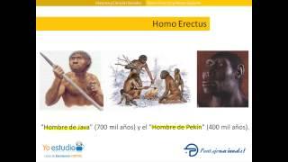 Homo Erectus y Homo Sapiens