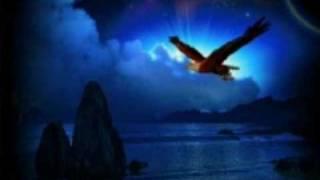 Vogel der Nacht Remix