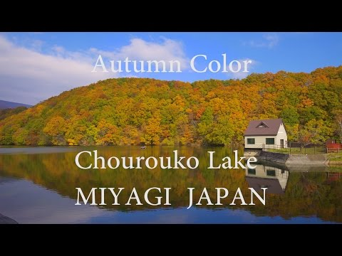 [4K]Tohoku Japan Autumn Colors Scenery-Chourouko Lake in Miyagi Prefecture