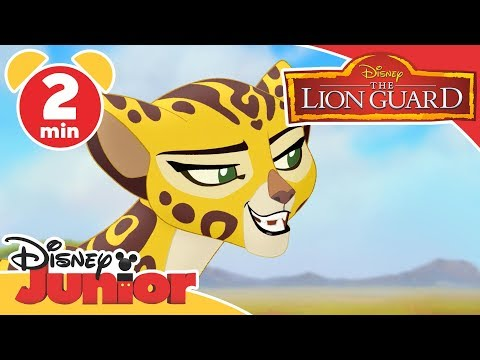 The Lion Guard | DJ On Safari: Ono and Fuli | Disney Junior UK