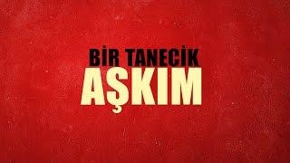Gülçin Ergül Bir Tanecik Aşkım Official Lyric Video