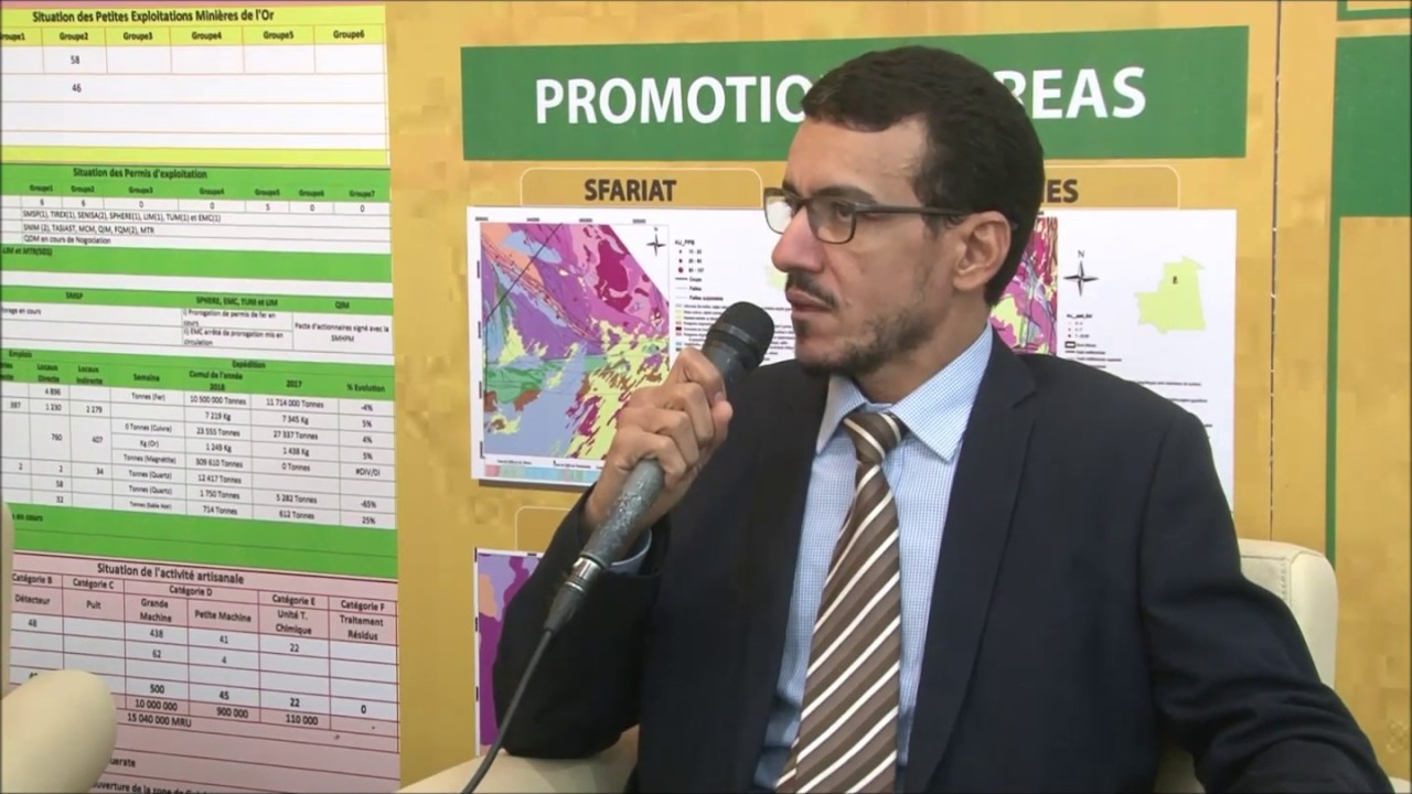 (French) Interview with Ahmed Vall Mohameden, Advisor to Minister of Petroleum, Mines & Energy