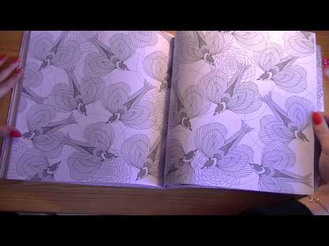 Animaux fantastiques marabout coloriage youtube - Dessin animaux fantastiques ...