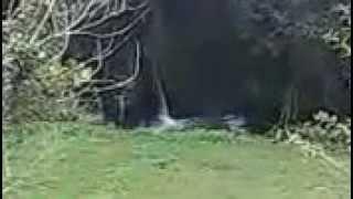 scarico nel fiume isclero a moiano