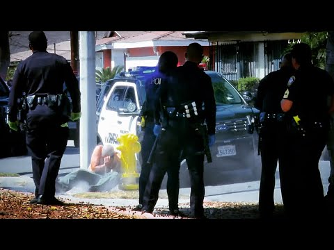 "Police ""TakeDown"" Suspect After Stabbing Brother 