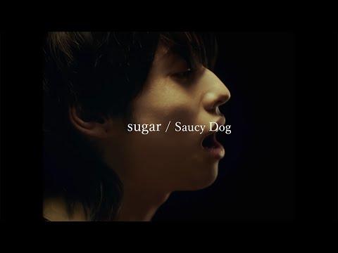 Saucy Dog「sugar」Music Video <5th Mini Album「レイジーサンデー」2021.8.25 Release>