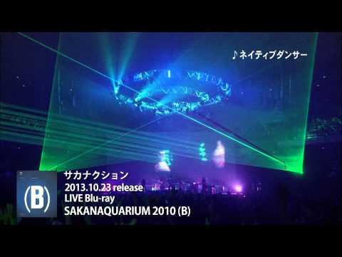 サカナクション - LIVE Blu-ray「SAKANAQUARIUM 2010(B)」トレーラー