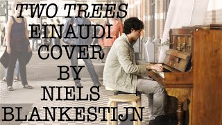 Einaudi ''Two Trees'' Cover - Live at Nijmegen Railway Station