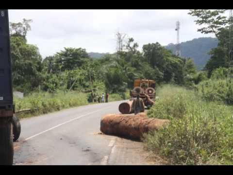 My Yaounde To Mile 17 Trip (by Mola Mbella Ndoko)