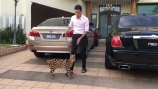 Lawak Geli Perut - Ragam Dato Aliff Syukri  & Dodi