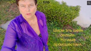 Шарм эль Шейх онлайн Ночные происшествия