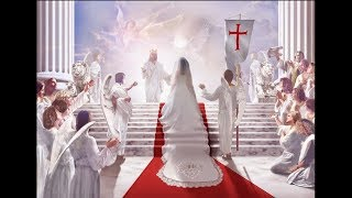 ТБ (5) Невеста для Небесного Адама