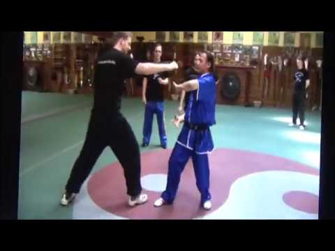Second part Workshop with qi for selfdefense by GM Walter Toch