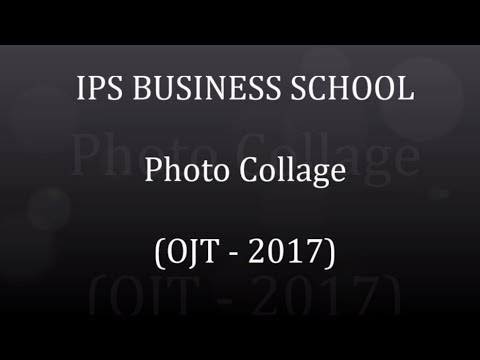 IPS BUSINESS SCHOOL - Photo Collages - (OJT 2017)