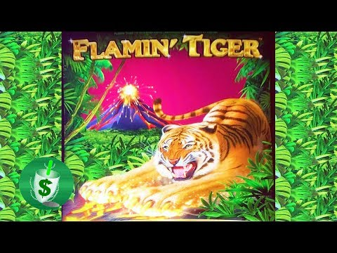 ++NEW Flamin' Tiger slot machine  