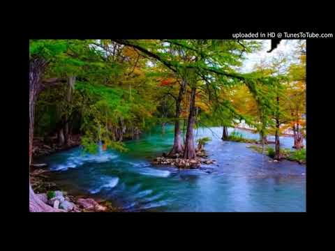 Leine - River