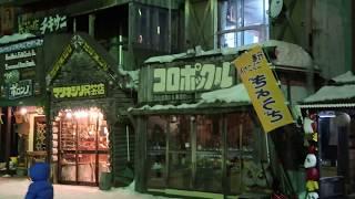2017/12/24 晚上平安夜北海道阿寒湖愛奴村巧遇下雪.
