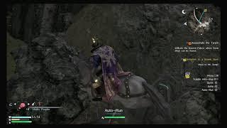 Dynasty Warriors 9 - Auto-Run (Into a Mountain)