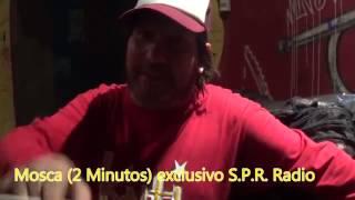 Mosca de 2 Minutos - Solo Punk Rock 2016
