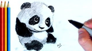 How to Draw Cute Panda - Step by Step Tutorial