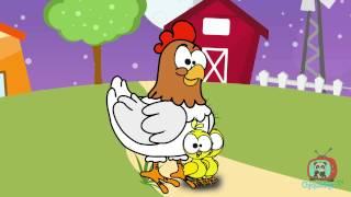 Los pollitos dicen pio pio ♫ canción infantil ♫ Español