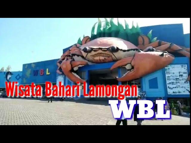 Wbl Lamongan Harga Tiket Wisata Bahari Lamongan