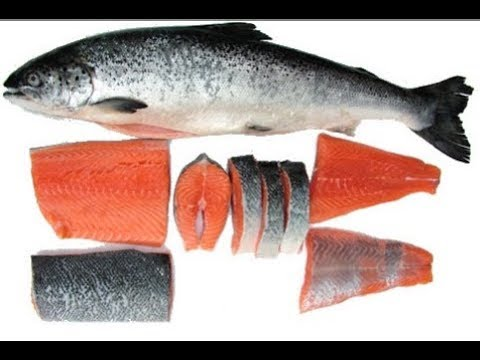 The Worst of Food Fraud: Organic Salmon. Alex Morton interview