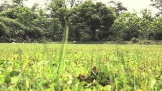 Keep Lantau Beautiful 保護大嶼山美貌