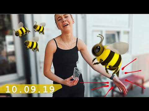 10.09 🐝 УЖАЛИЛА ОСА 😭 УЧЕБА В КОЛЛЕДЖЕ    Такой себе фильм