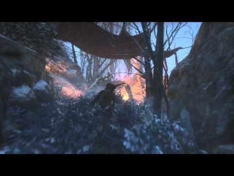 Rise Of The Tomb Raider - Siberian Wilderness Coin Caches